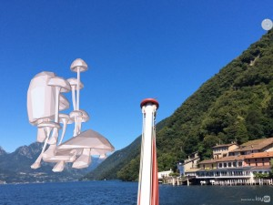 Floating Mushrooms on Tour – Studer / van den Berg –