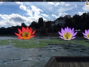 Water Lily Invasion – Tamiko Thiel